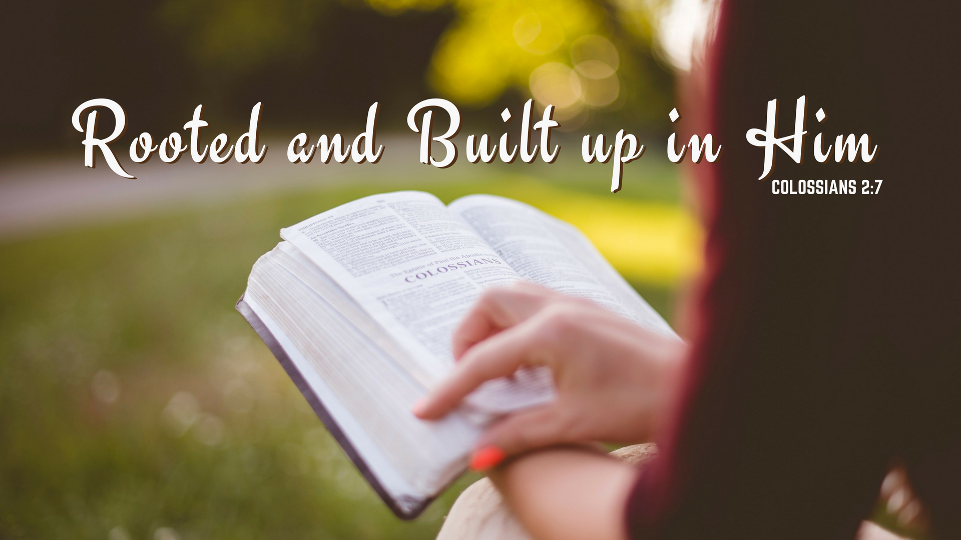 Rooted and Built up in Christ Colossians 2:7   Oak Grove Church of Christ