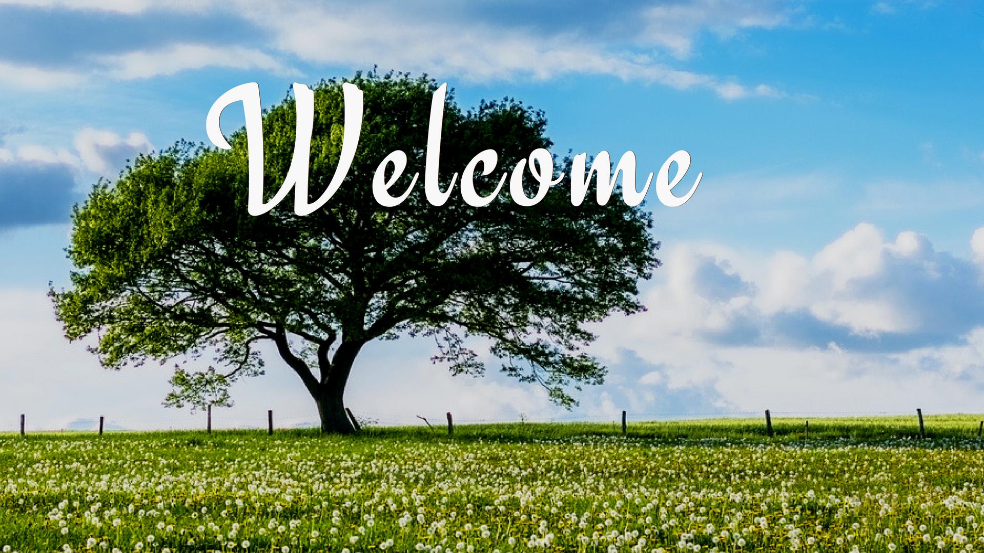 Welcome   Oak Grove Church of Christ
