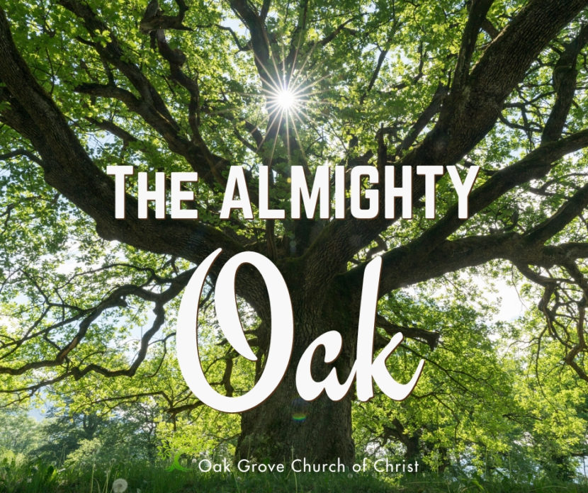 The Almighty Oak | Jack McNiel, Evangelist, Oak Grove Church of Christ