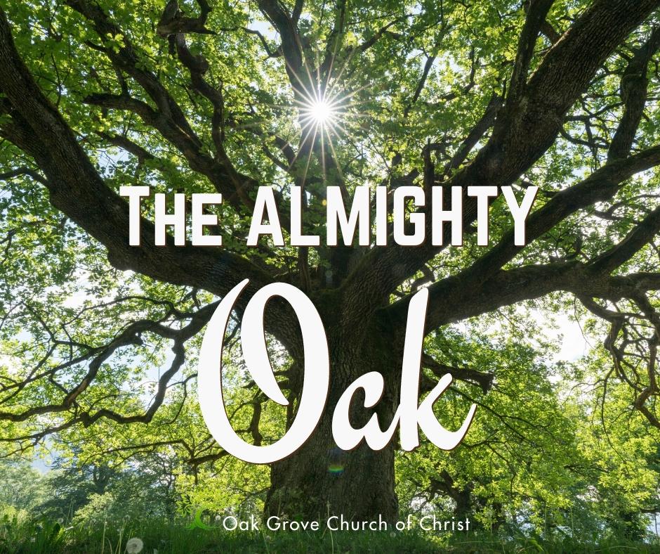 The Almighty Oak | Jack McNiel, Evangelist, Oak Grove Church of Christ