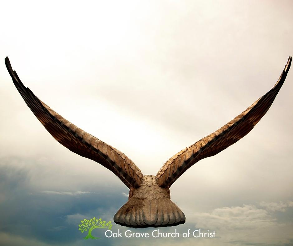 Image: Flying Eagle - Text: Spiritual and National Liberty