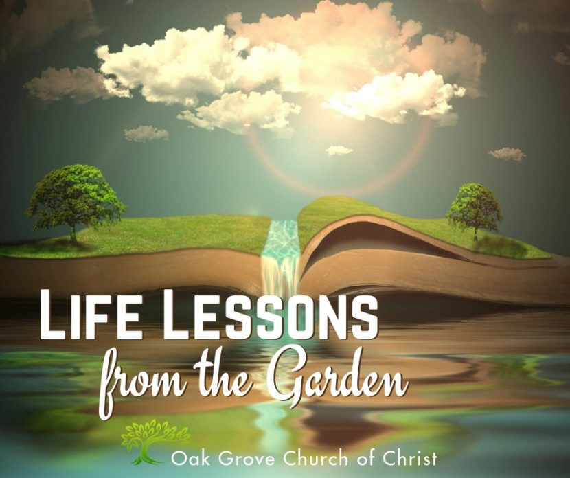 Life Lessons from the Garden | Jack McNiel, Evangelist, Oak Grove Church of Christ