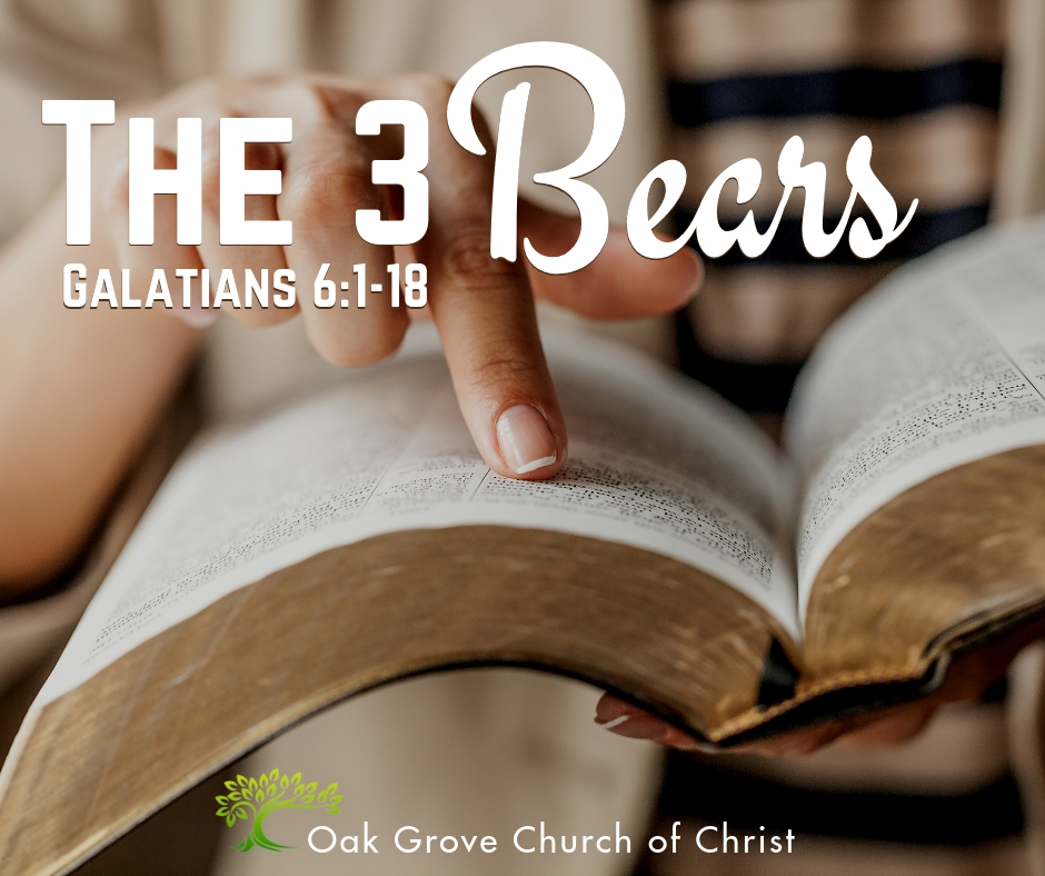 The 3 Bears of Galatians 6