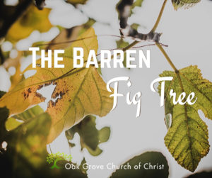 The Barren Fig Tree | Sean McLaughlin, Member Oak Grove Church of Christ