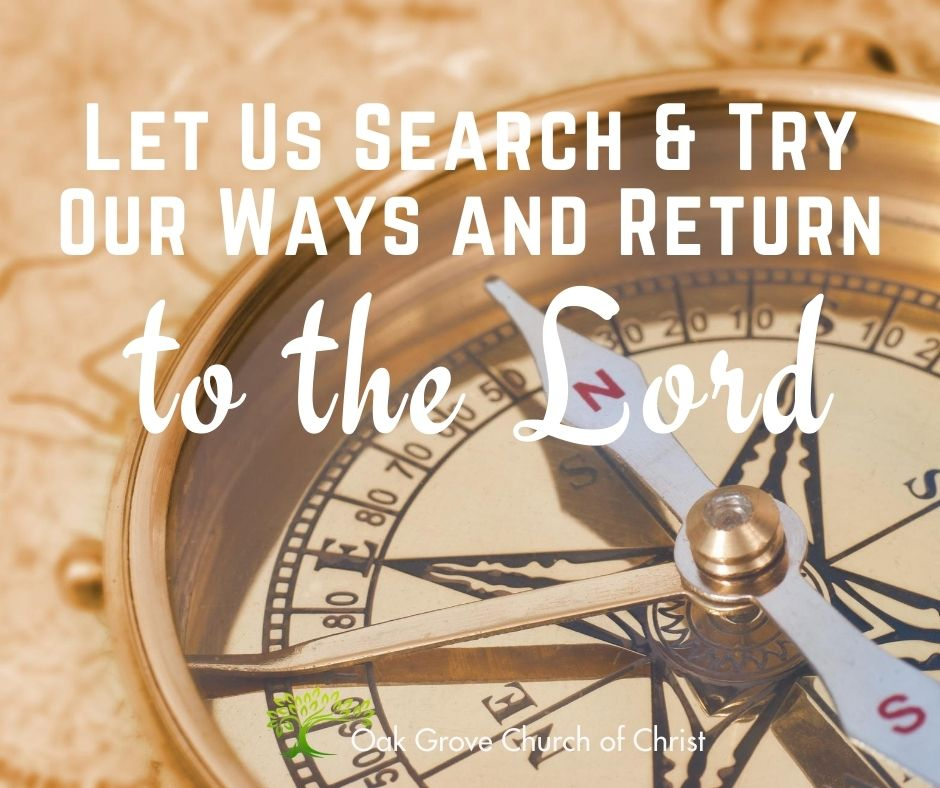 Let us Search and Try Our Ways