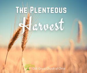 The Plenteous Harvest