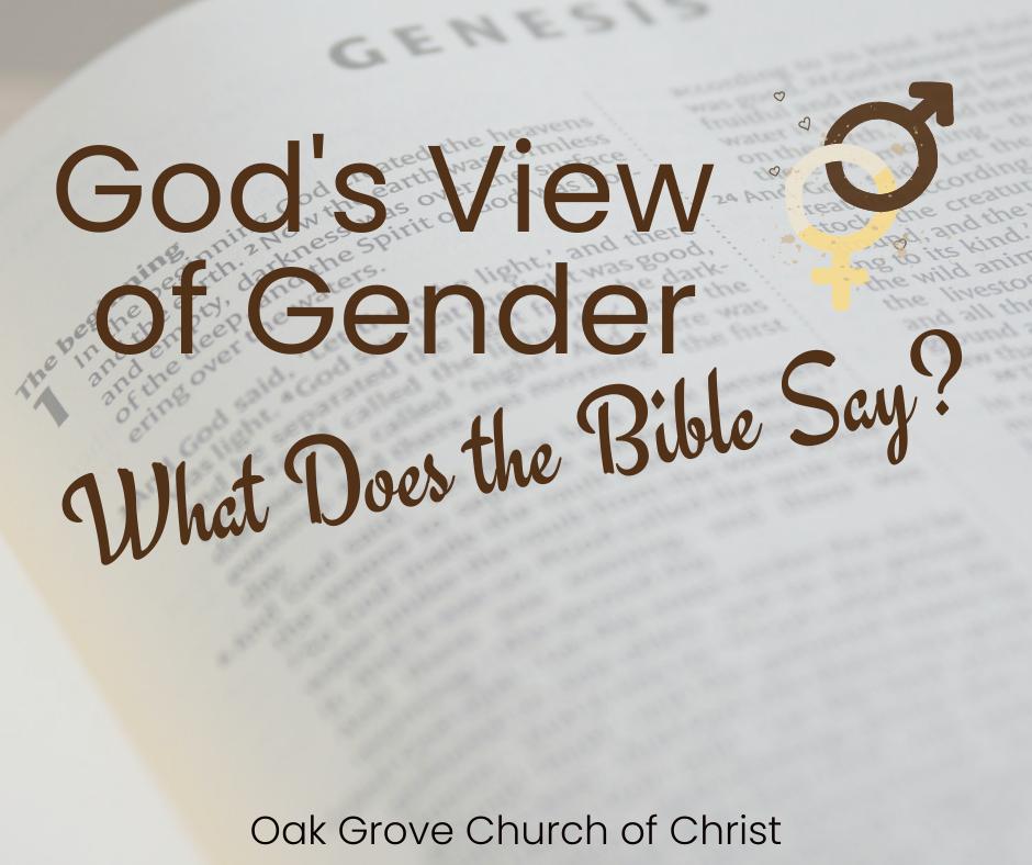 God's View on Gender